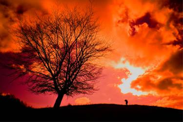 'velvet somebody' by photofreak07