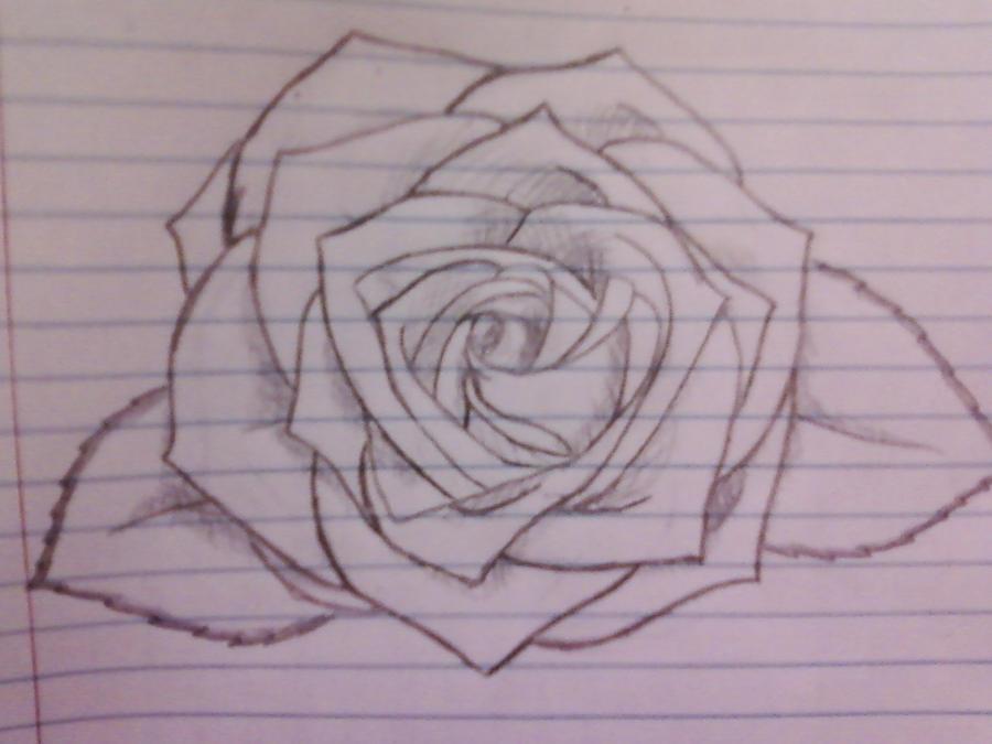 Simple Line Art Rose : Rose drawing by boldenergeticnerd on deviantart