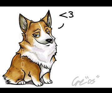 Corgi by cme