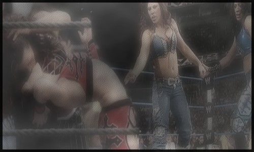 Mickie James and Melina Banner by TheSoulOfTheSouless