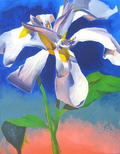 Bloom WIP by taho
