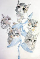 Cat Flowers by taho