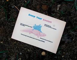 Know Your Axolotl