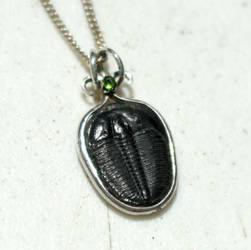 Trilobite and Chrome Diopside Pendant