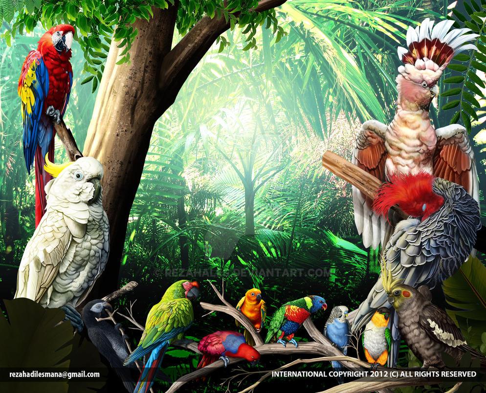 Parrot Jungle by rezahales