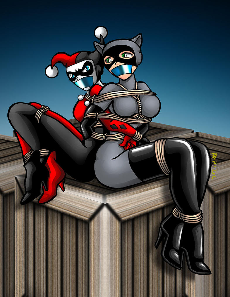 Harley and Catwoman commission by ARNie00