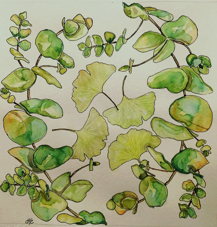 Eucalyptus and Ginkgo Leaves by mybuttercupart