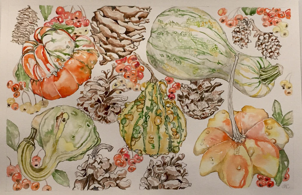 Gourds, Pinecones and Pyracantha  by mybuttercupart