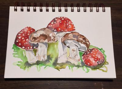 Mushrooms  by mybuttercupart