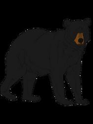 black bear by staqhound