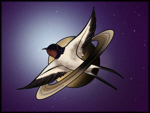 Space swallow nasa edition - 06 novembre 2018