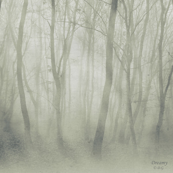 Dreamyy.. by DilekGenc