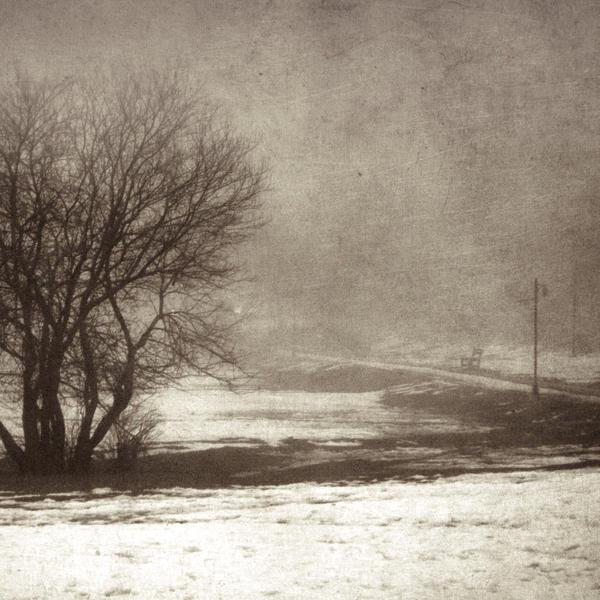 A Taste of Winter II by DilekGenc