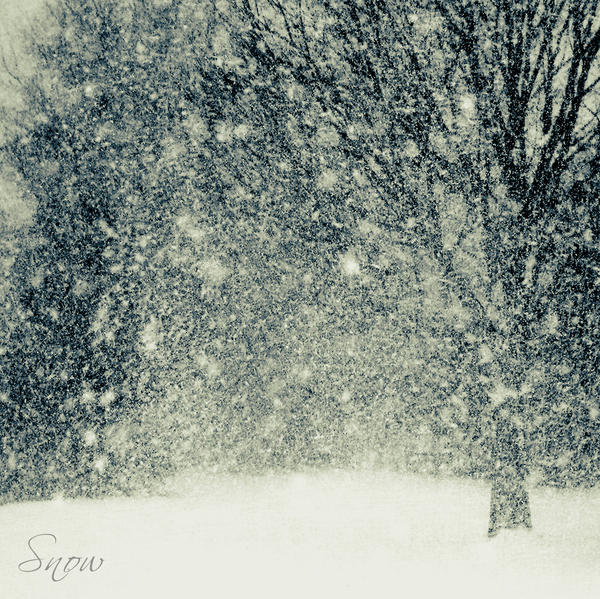 Cold Winter by DilekGenc