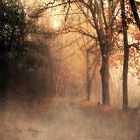 So Far Away... by DilekGenc
