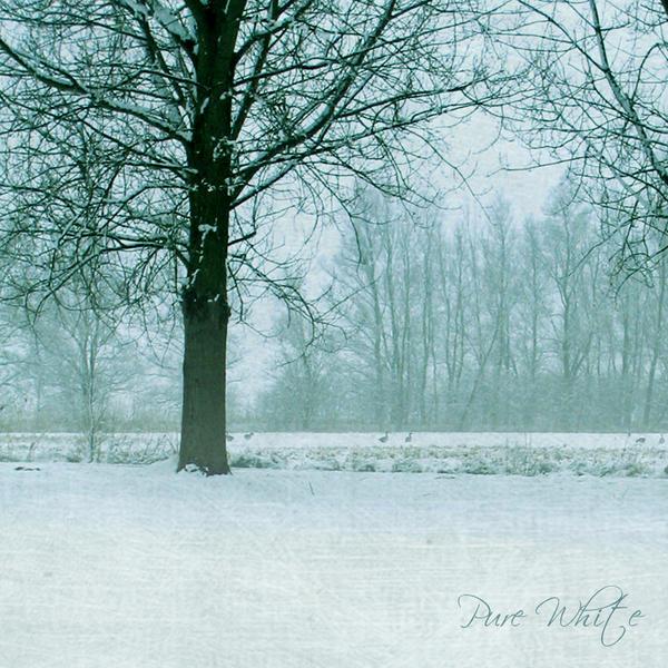 Pure White by DilekGenc