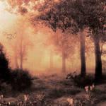 Forest v2