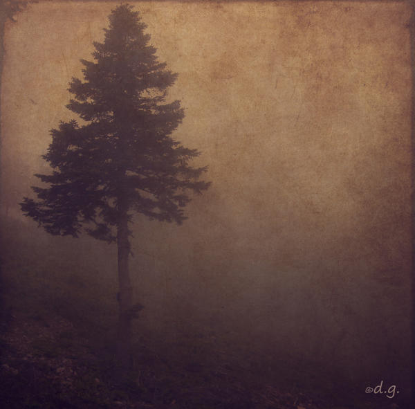 Single One by DilekGenc