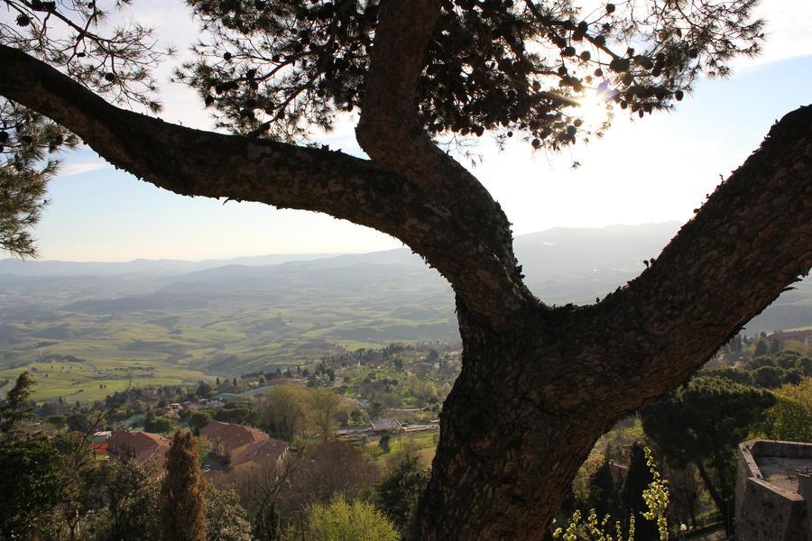 Toscana by Leif93