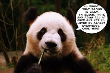 Panda Wisdom by HonorableBaldy