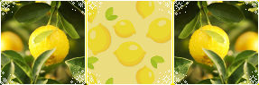 Lemons - profile decor