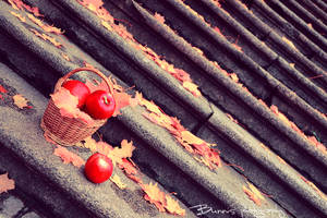 Tasty autumn made of apple. by Bunnis