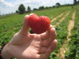 Just a strawberry heart by TheStarsWillShine