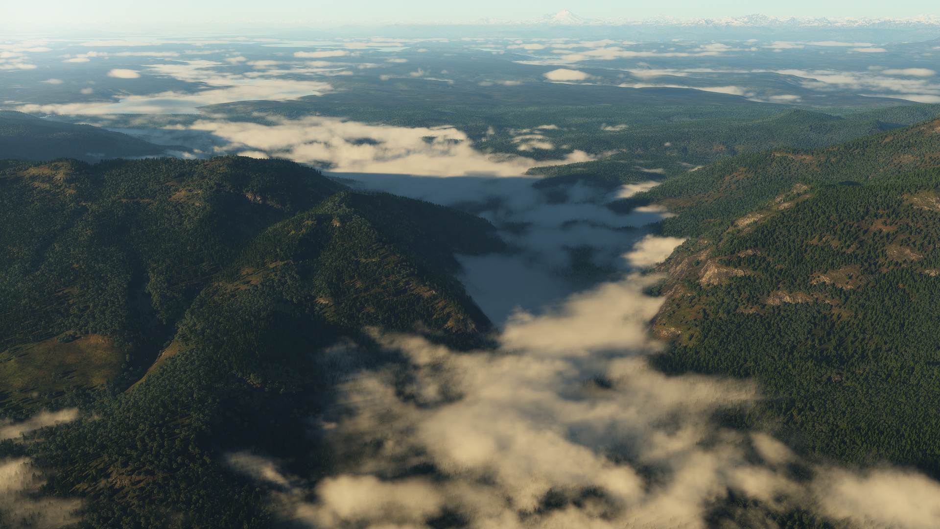 Foggy Hills by Gannaingh32