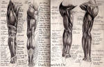 Classics: Arms and Legs