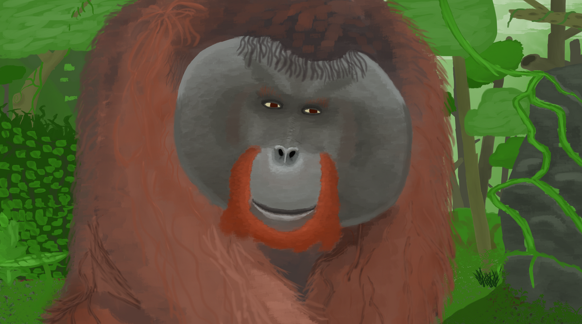 Orangutan in the forest by LatePacket