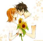 OP: sunnflowers