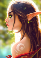 Young Blood Elf by Nixri