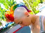 The rainbow Mohawk