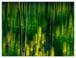 Luminous Landscapes - 02