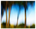 Luminous Landscapes - 04