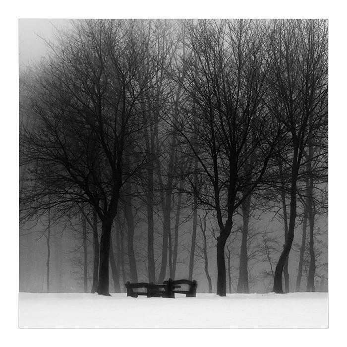 Mist 02 by HorstSchmier