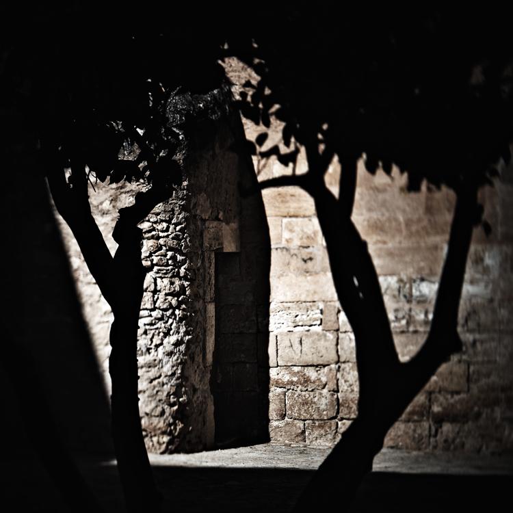 Mallorca Segments 16 by HorstSchmier