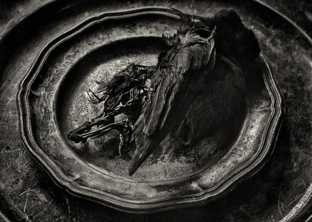 Death and Decay 07 by HorstSchmier