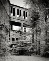 Remnants 03 by HorstSchmier