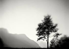 Cimalmotto, Ticino, Switzerland by HorstSchmier