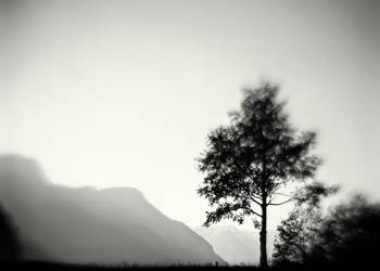 Cimalmotto, Ticino, Switzerland by HorstSchmier