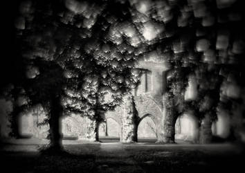 Eldena monastery ruins 02