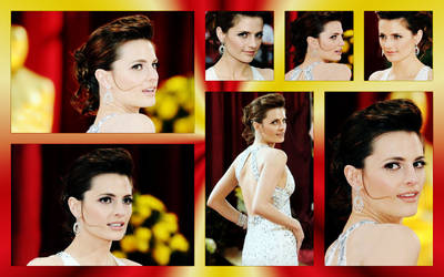 Stana Katic: Oscars Red Carpet by michygeary