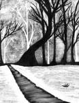 The Dark, Snowy Forest