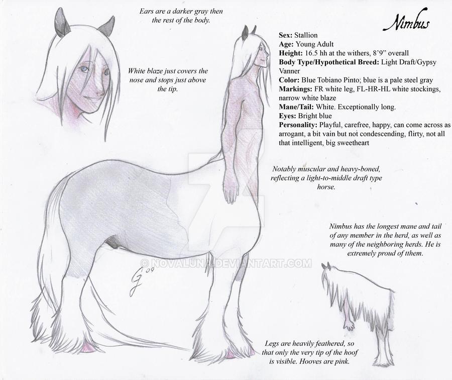 Nimbus - Centaur by NovaLuna on DeviantArt
