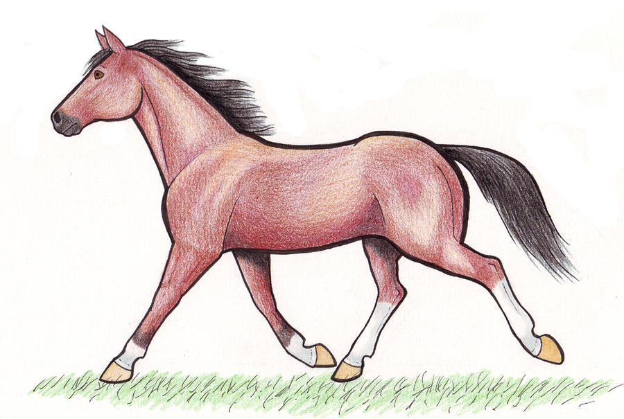How to draw horse trotting