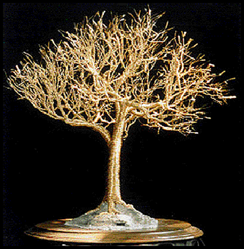 Golden elm wire tree sculpture by sal villano by for How to make a wire tree of life sculpture