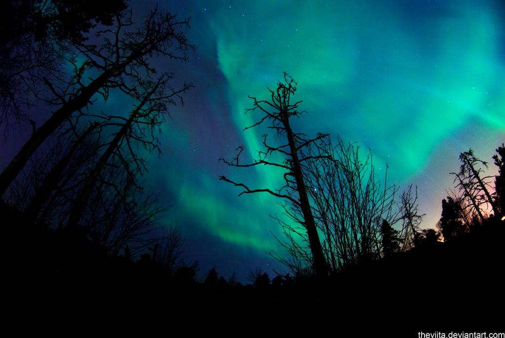 Aurora 5 by theviita
