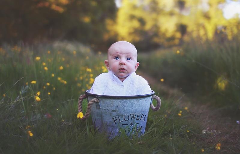 In flowers by Burder