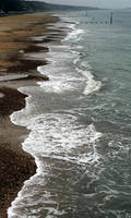shoreline samba